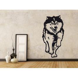 Samolepka na zeď Husky 001