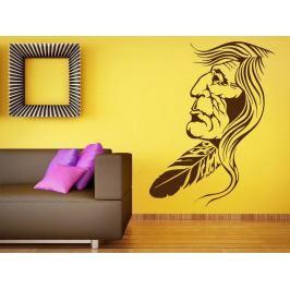 Samolepka na zeď Indián 001