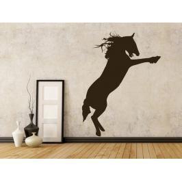 Samolepka na zeď Kůň 008