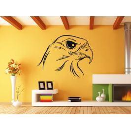 Samolepka na zeď Pták 003