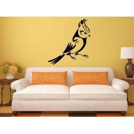 Samolepka na zeď Pták 011