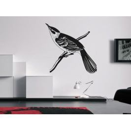 Samolepka na zeď Pták 016