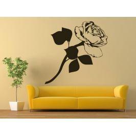 Samolepka na zeď Růže 009