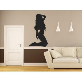 Samolepka na zeď Sexy tanečnice 003