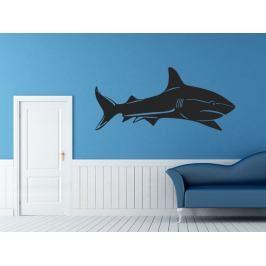 Samolepka na zeď Žralok 004