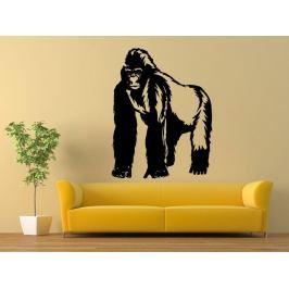 Samolepka na zeď Gorila 001