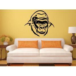 Samolepka na zeď Gorila 002