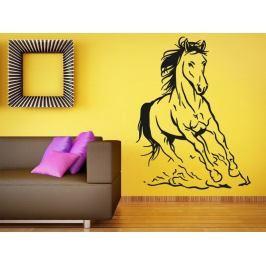 Samolepka na zeď Kůň 027