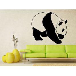 Samolepka na zeď Panda 004