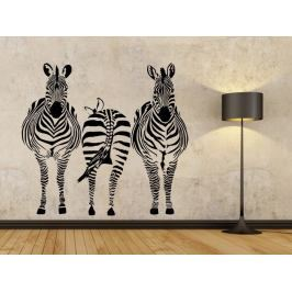 Samolepka na zeď Zebra 015