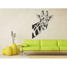 Samolepka na zeď Žirafa 005