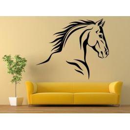 Samolepka na zeď Kůň 0337