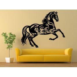 Samolepka na zeď Kůň 0344