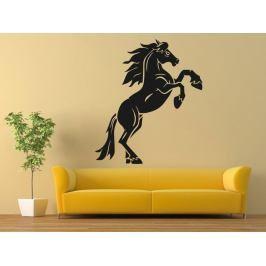 Samolepka na zeď Kůň 0347