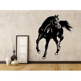 Samolepka na zeď Kůň 0348