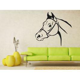 Samolepka na zeď Kůň 0356