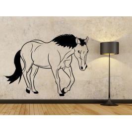 Samolepka na zeď Kůň 0359