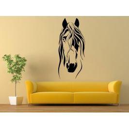 Samolepka na zeď Kůň 0360