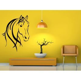 Samolepka na zeď Kůň 0364