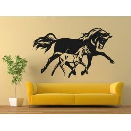 Samolepka na zeď Kůň 0382