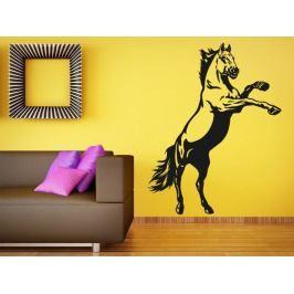 Samolepka na zeď Kůň 0384