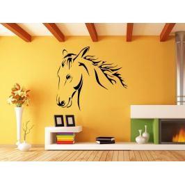 Samolepka na zeď Kůň 0385