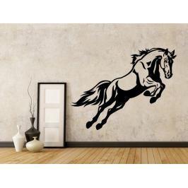 Samolepka na zeď Kůň 0386