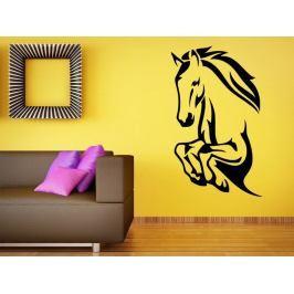Samolepka na zeď Kůň 0389