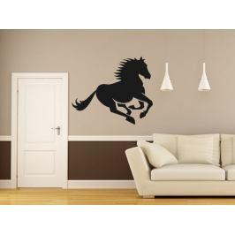 Samolepka na zeď Kůň 0392