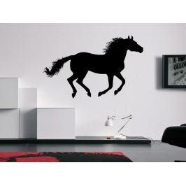 Samolepka na zeď Kůň 0395