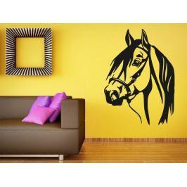 Samolepka na zeď Kůň 0399