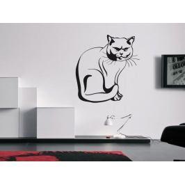 Samolepka na zeď Kočka 0432