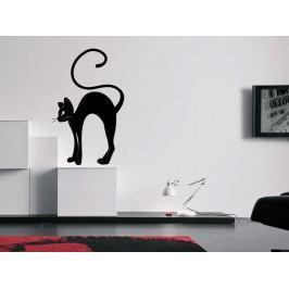 Samolepka na zeď Kočka 0467