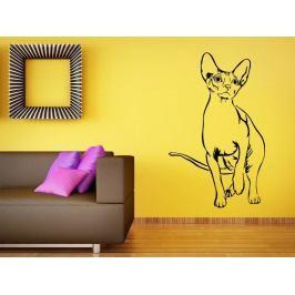 Samolepka na zeď Kočka 0497