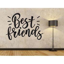 Samolepka na zeď Nápis Best friends 0662
