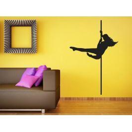 Samolepka na zeď Pole dance 0979