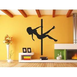 Samolepka na zeď Pole dance 0980