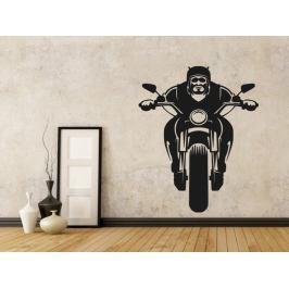 Samolepka na zeď Motorkář 1032