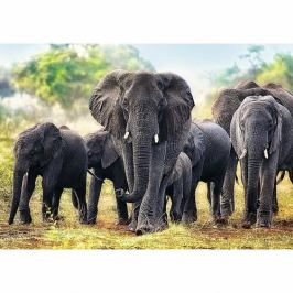 Puzzle Trefl 10442 Afričtí sloni 1000 dílků