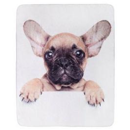 Jerry Fabrics Deka Puppy Bulldog microflanel, 120 x 150 cm