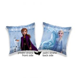 Jerry Fabrics Polštářek Frozen 2 sides L, 40 x 40 cm
