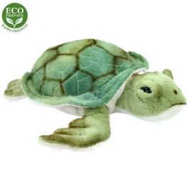 Rappa želva 20 cm
