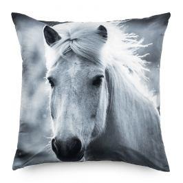 BO-MA Trading Povlak na polštářek Kůň, 70 x 70 cm