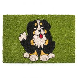 BO-MA Trading Kokosová rohožka Pes černý 358 zelená, 40 x 60 cm