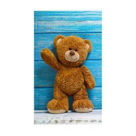 Dětský ručník Medvídek 30x50 cm froté