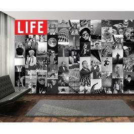 1Wall 1Wall Kreativní koláž 64 dílů 37,5 x 27,5cm časopis LIFE
