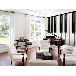 1Wall fototapeta Piano 315x232 cm