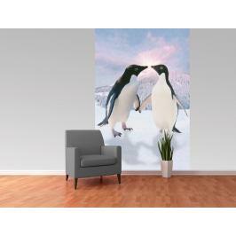 1Wall fototapeta Tučňáci 158x232 cm