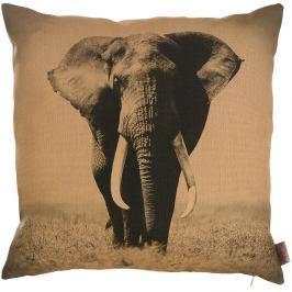 Povlak na polštář Apolena African Elephant, 43 x 43 cm