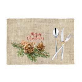 Sada 2 vánočních prostírání Apolena Honey Merry, 33x45 cm